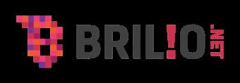 Lowongan pekerjaan di PT BRILIO VENTURA INDONESIA